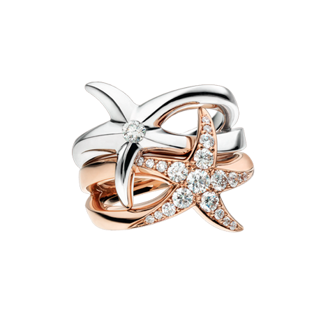 Beach Rocks Interlocking Starfish Rings with pavé and single Diamond in White and Red Gold