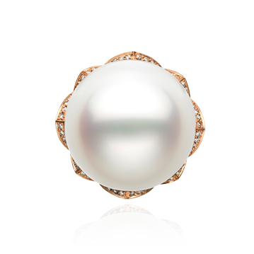 Arabesque South Sea Pearl Ring in Red Gold
